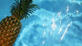 Ananas som svävar i blått vatten i simbassäng Sund rå organisk mat saftig frukt exotiskt tropiskt för bakgrund arkivfilmer
