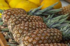 Ananas sprzedający w rynku Ananas sprzedający w owocowym rynku Ananasy zbierają od gospodarstwa rolnego wypiętrzali zdjęcie stock