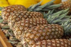 Ananas sprzedający w rynku Ananas sprzedający w owocowym rynku Ananasy zbierają od gospodarstwa rolnego wypiętrzali obrazy stock