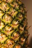 Ananas in su 2 vicini Fotografia Stock Libera da Diritti