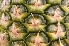 Ananas in su 3 vicini Fotografia Stock