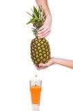 Ananas su un fondo bianco Fotografie Stock Libere da Diritti