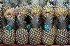 Ananas su visualizzazione in memoria Immagini Stock