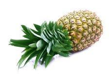 Ananas sugoso maturo immagine stock libera da diritti