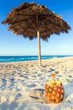 Ananas sulla spiaggia Fotografie Stock Libere da Diritti