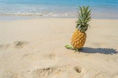 Ananas sulla spiaggia Fotografia Stock Libera da Diritti