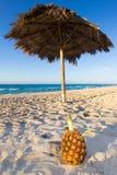 Ananas sur la plage Image stock