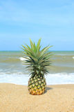 Ananas sur la plage Photos stock