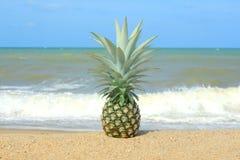 Ananas sur la plage Photographie stock libre de droits