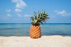 Ananas sur la plage blanche de sable sur le fond de la mer bleue et le ciel un jour ensoleillé Photographie stock