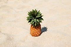 Ananas sur la plage blanche de sable un jour ensoleillé Photographie stock libre de droits