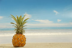 Ananas sur la plage exotique Photographie stock