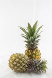 Ananas sur le fond blanc Photographie stock libre de droits