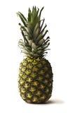 Ananas sur le fond blanc Photos libres de droits