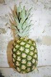 Ananas sur le mur Photographie stock libre de droits