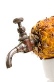 Ananas with tap Stock Images