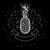 Ananas tiré par la main, découpe blanche sur le fond des rayons linéaires calligraphie Ruban, drapeau Pour la conception des affi Photos libres de droits