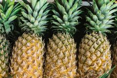 ananas trois image stock