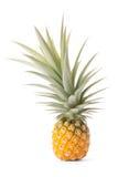 Ananas tropische fruit of ananas Royalty-vrije Stock Afbeeldingen