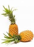 ananas två Royaltyfria Bilder