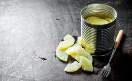 Ananas in un barattolo di latta fotografia stock libera da diritti