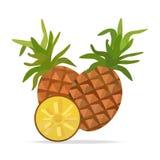 Ananas- und Blattvektorgegenstände Lizenzfreies Stockbild