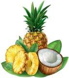 Ananas und geschnittene Kokosnuss Lizenzfreie Stockfotografie