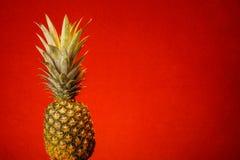 Ananas und Rot Stockbild