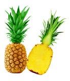 Ananas uno e mezzo Immagine Stock Libera da Diritti