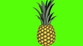 Ananas, vid?o de l'animation 3D pour les cuiseurs, 4K illustration de vecteur