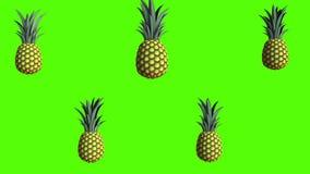 Ananas, vid?o de l'animation 3D pour les cuiseurs, 4K illustration stock