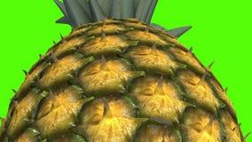Ananas, vid?o de l'animation 3D pour les cuiseurs, 4K clips vidéos