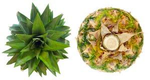 Ananas. Vista su e sotto Fotografia Stock Libera da Diritti