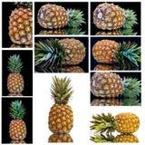 Ananas von allen Seiten Lizenzfreies Stockfoto