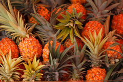 Ananas w rynku Obrazy Royalty Free