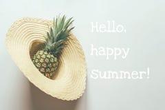 Ananas w s?omianym kapeluszu zdjęcie stock