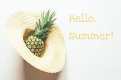 Ananas w s?omianym kapeluszu obrazy royalty free