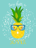 Ananas w szkłach Lata pojęcia tła wektor Illustrat ilustracji