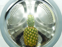 Ananas washing machine Stock Image