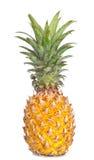 ananas on white background Royalty Free Stock Photo