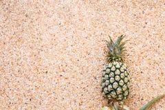 Ananas z kopii przestrzenią nad tłem Owoc, dieta, zdrowy karmowy pojęcie zdjęcie royalty free