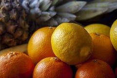 Ananas z mieszanką tropikalne owoc wliczając pomarańcz, cytryny zdjęcia stock