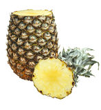 Ananas z rżniętą poradą odizolowywającą na bielu Obraz Royalty Free