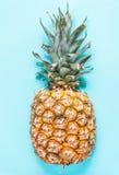 Ananasa pn błękitny pastelowy tło Fotografia Royalty Free