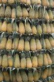 Ananasa wierza Obraz Stock