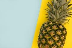 Ananasfruit op het gele concept van het achtergrond minimale de zomervoedsel royalty-vrije stock afbeelding
