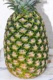 Ananasfrukt, Ananascomosus Arkivbild