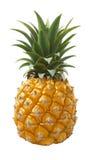 Ananasfrukt som isoleras på vit bakgrund royaltyfri bild