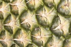 ananashud arkivbilder
