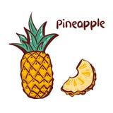 Ananasikone Tropische Frucht, lokalisiert auf weißem Hintergrund Symbol der frischen Nahrung, süß, exotisch, Sommer, Vitamin, ges stock abbildung